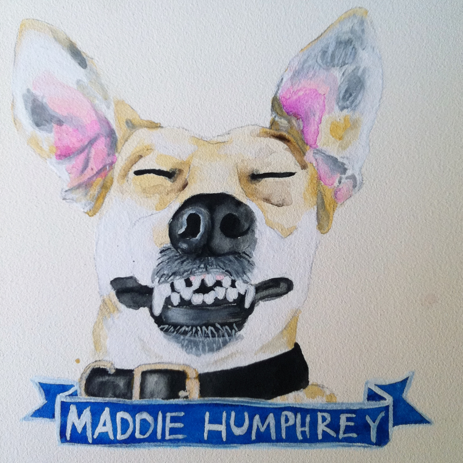 Talent Loves Company at Barbara Archer Gallery: 365 portraits by Lydia Walls - Maddie Humphrey